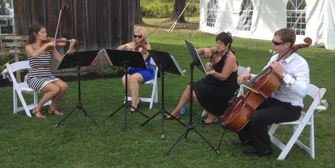 String Quartet Band